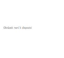 Betonový chodníkový obrubník Best Linea II 8x25x100 cm červená