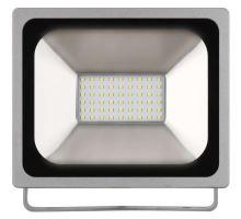 Reflektor LED 30W, Profi CW ZS2630