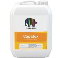 Caparol Capatox - biocidní nátěr proti plísním a houbám